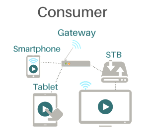 Badu Consumer Solutions